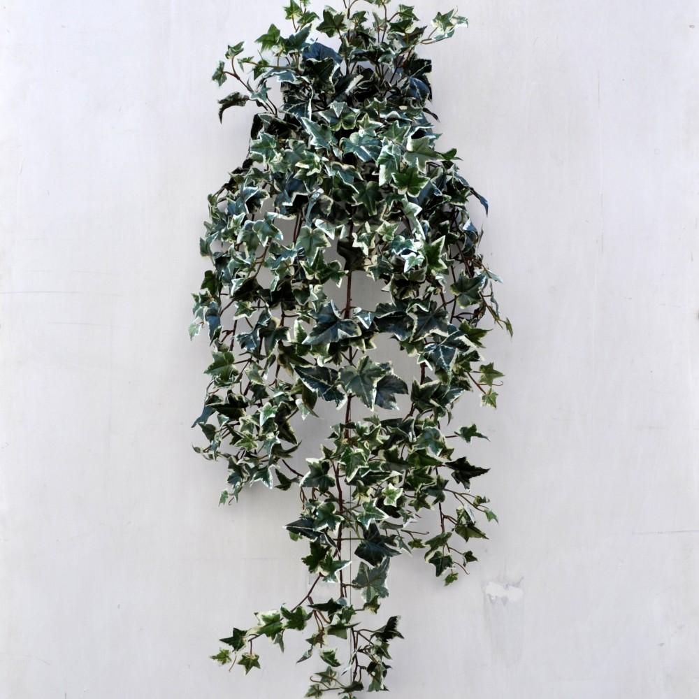 Pianta artificiale edera variegata maxi per arredamento fiori fiori - Edera da interno ...