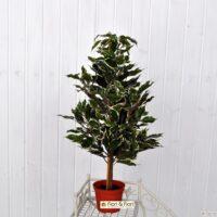 Ficus Benjamin artificiale variegato
