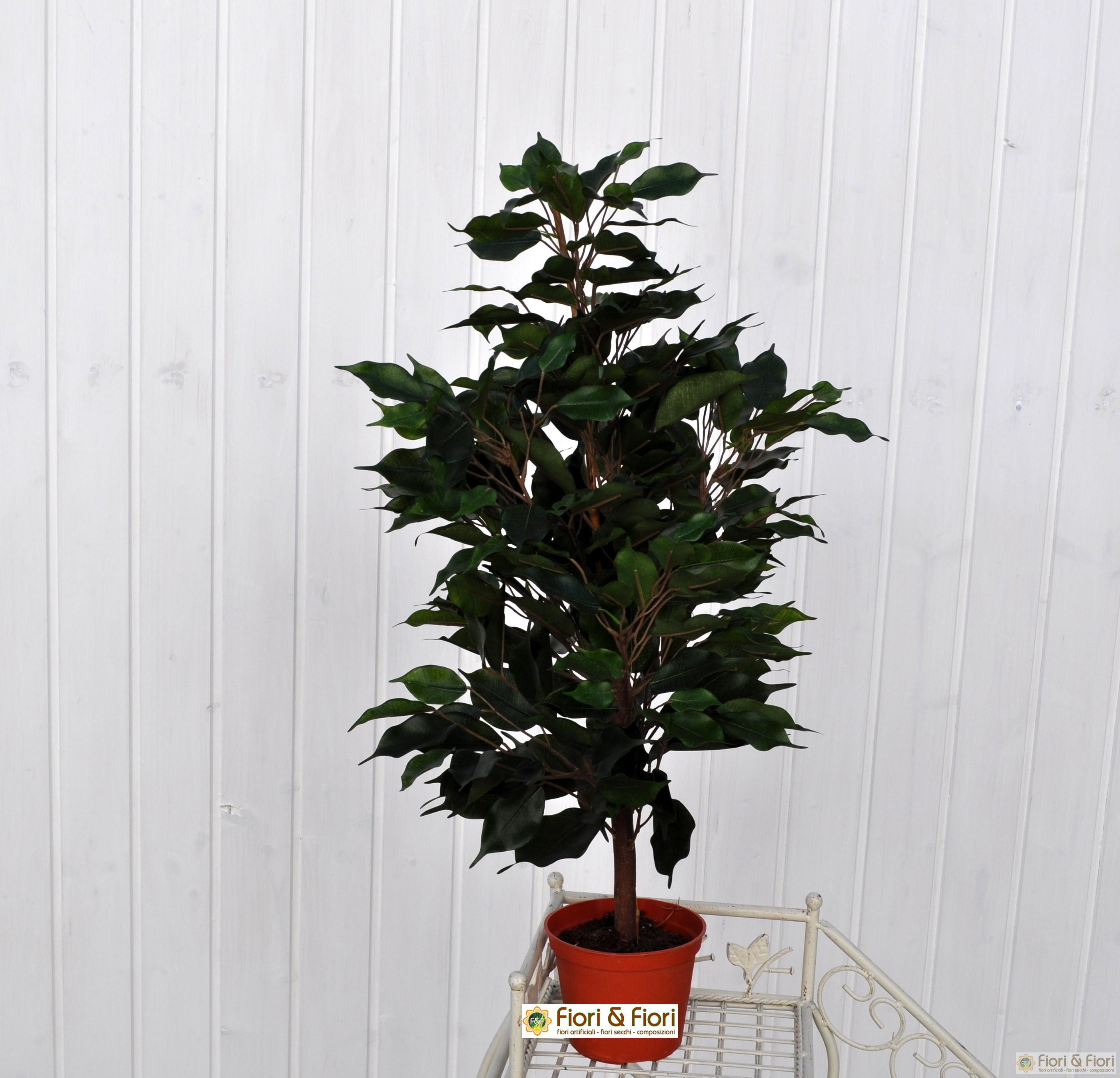 Come Riprodurre Il Ficus Benjamin ficus benjamin artificiale verde