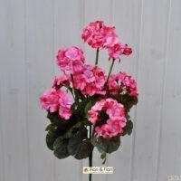 Pianta artificiale Geranio zonale rosa