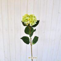 Fiore artificiale ortensia alice verde