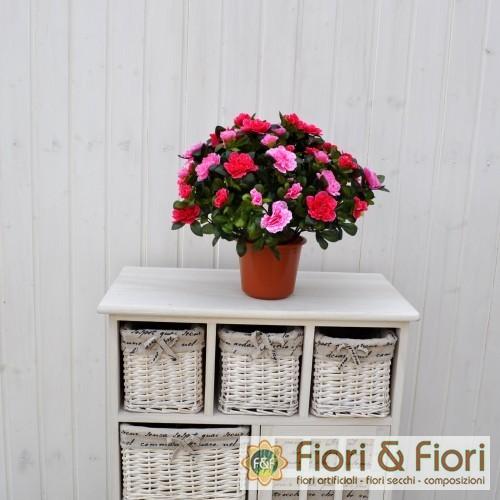 Pianta artificiale azalea bicolore fucsia fiori fiori - Azalea da interno ...
