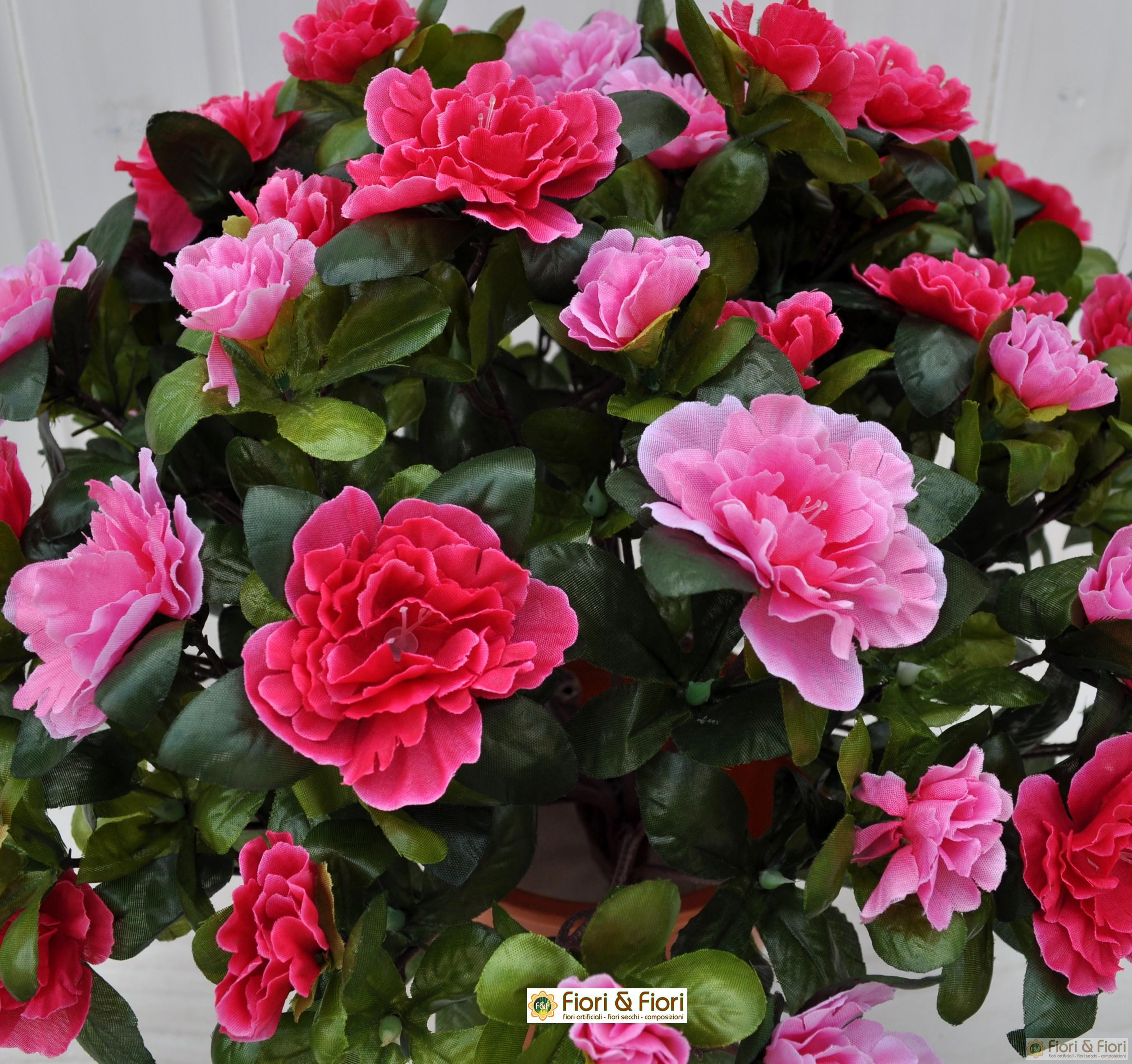 Pianta artificiale azalea bicolore fucsia - Azalea da interno ...