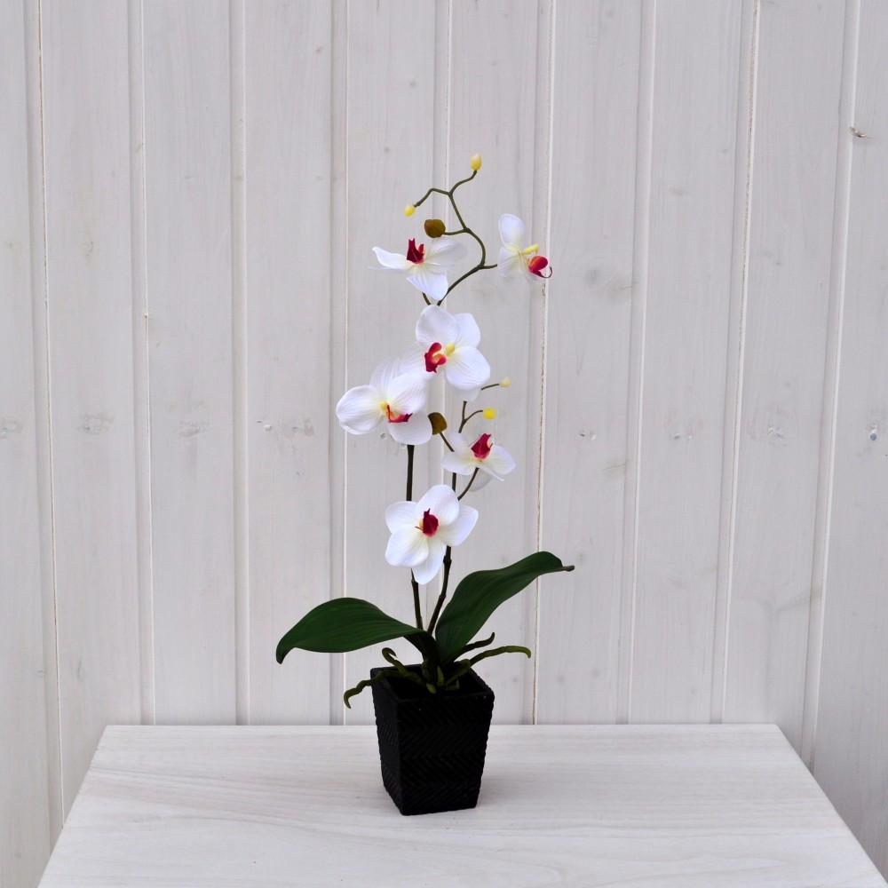 Pianta finta sia da interno che esterno orchidea for Orchidea pianta