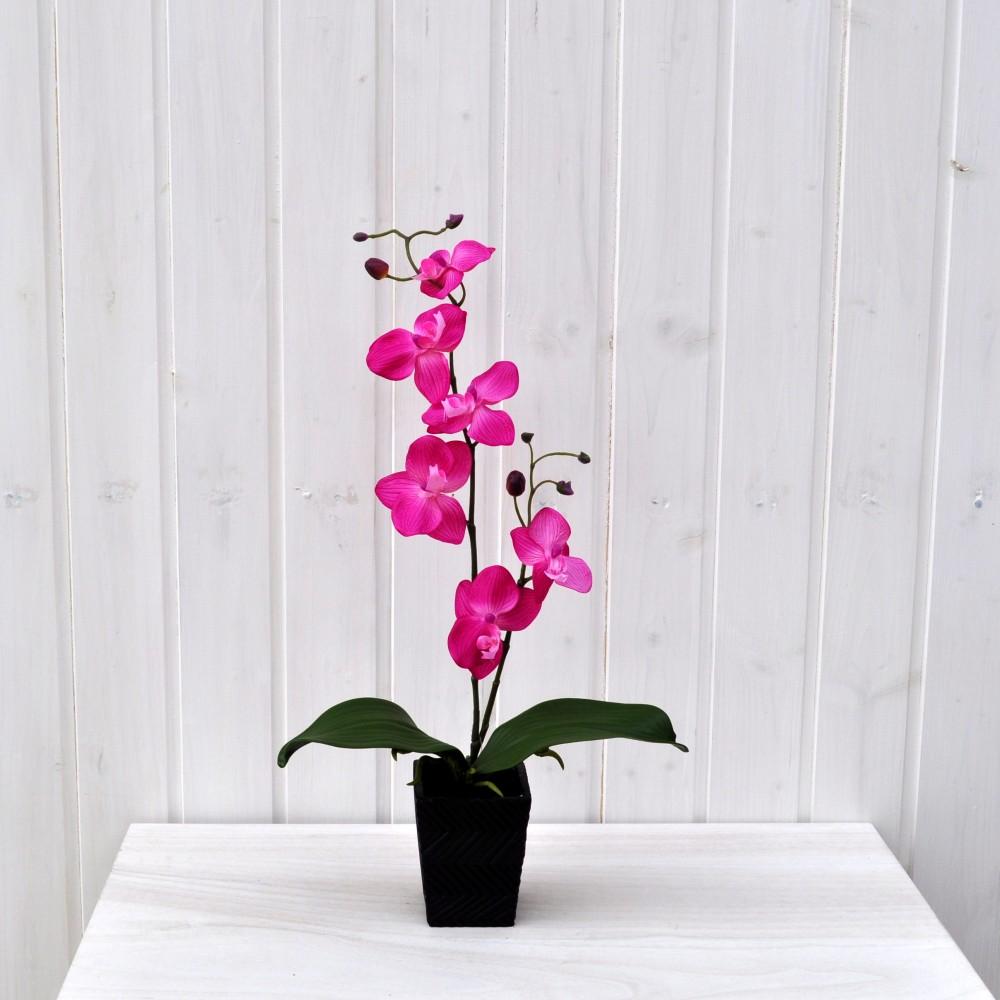 Pianta finta di orchidea phalaenopsis vanda fucsia fiori for Orchidea finta