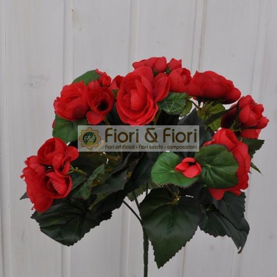 Fiori secchi on line fiori secchi on line vendita online for Acquisto piante e fiori on line