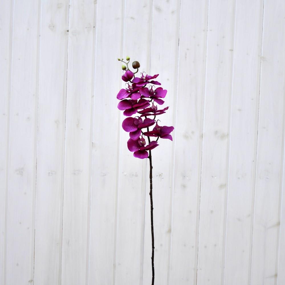 Orchidea phalaenopsis artificiale fucsia fiori fiori for Orchidea finta