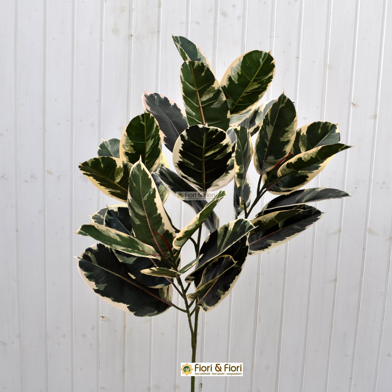 Pianta artificiale ficus elastica variegato