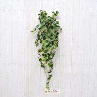 Pianta artificiale edera real touch variegata