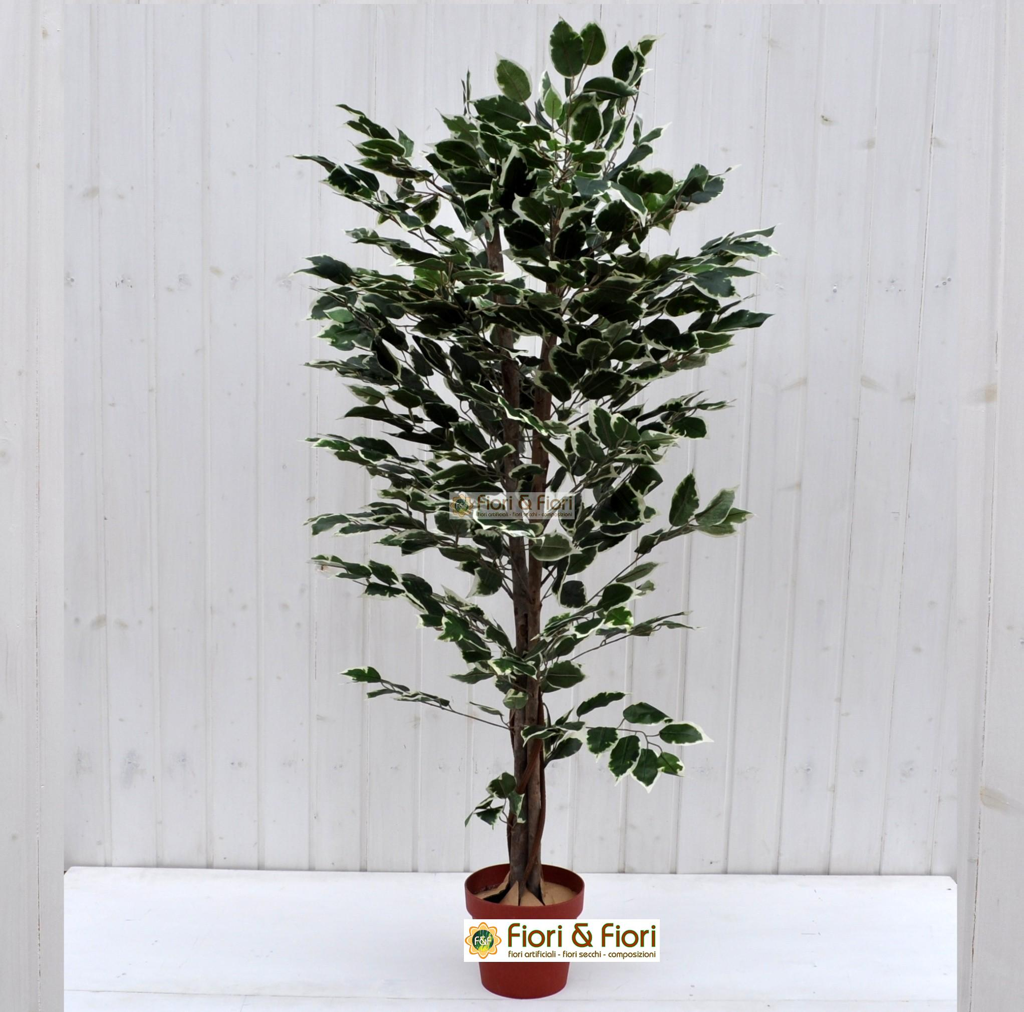 Pianta artificiale Ficus Benjamin