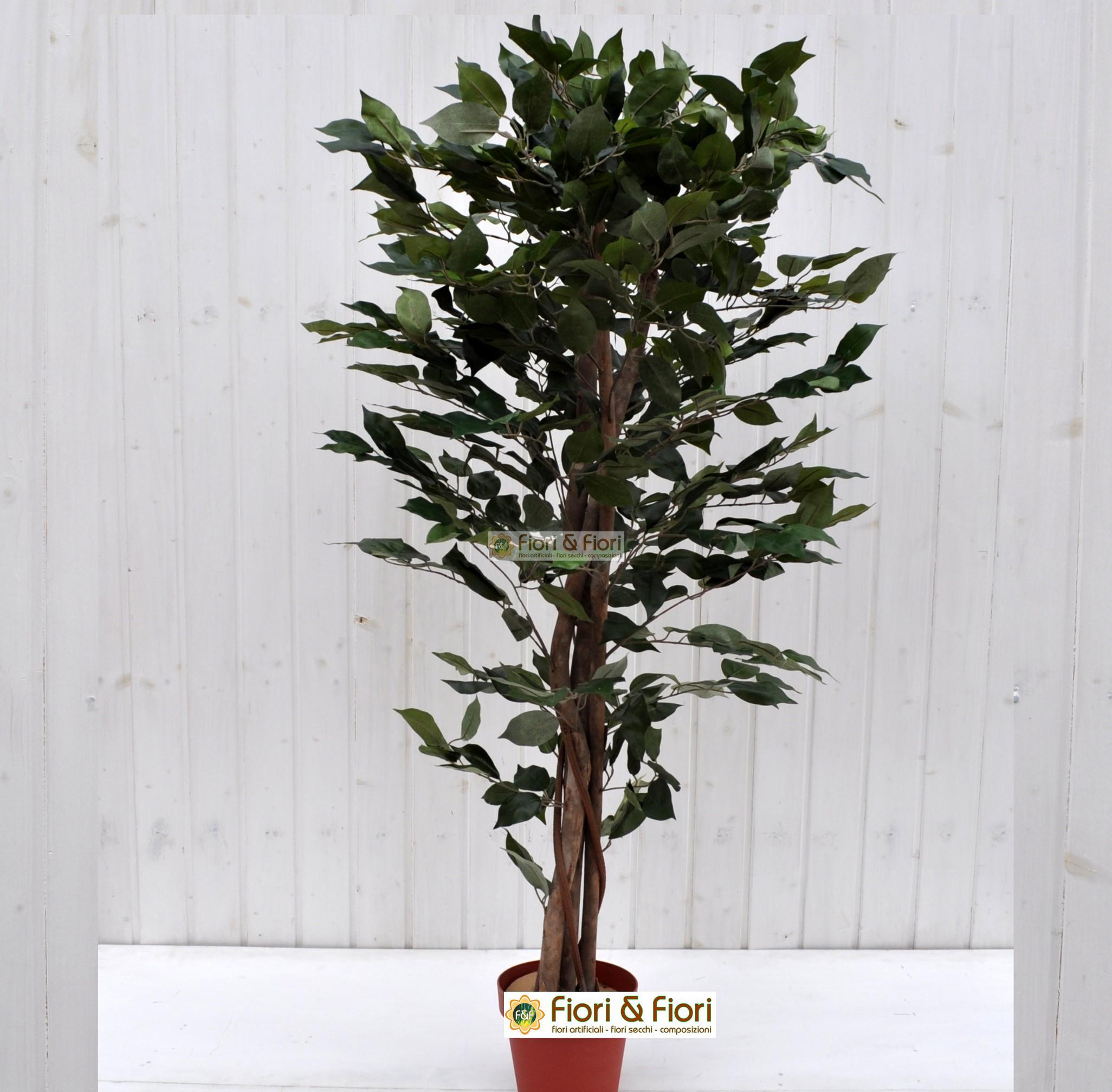 Pianta artificiale Ficus Benjamin verde