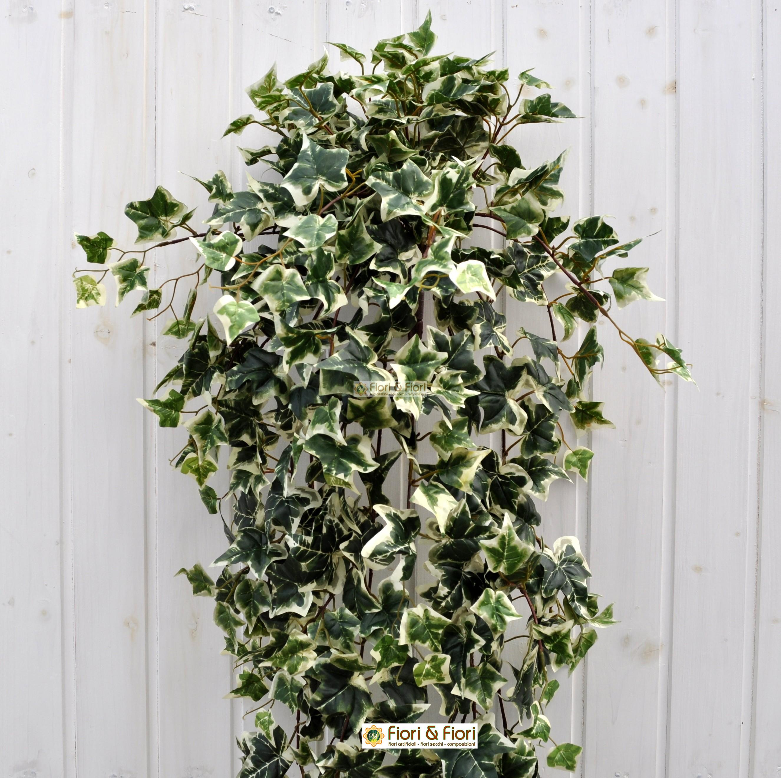 Pianta artificiale edera variegata maxi per arredamento - Edera da interno ...
