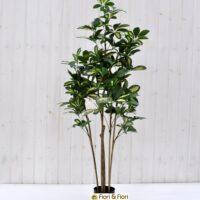 Pianta artificiale schefflera variegata
