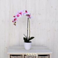 Orchidea phalaenopsis artificiale real touch rosa