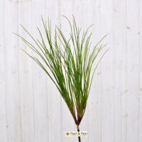 Fili erba artificiale
