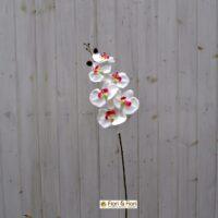 Fiore artificiale Orchidea phalaenopsis bianca