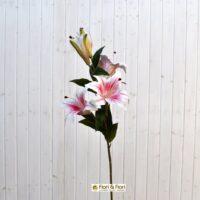 Lilium artificiale rosa