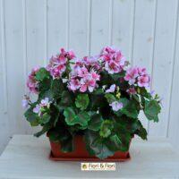 Geranio artificiale pelargonium rosa B ne