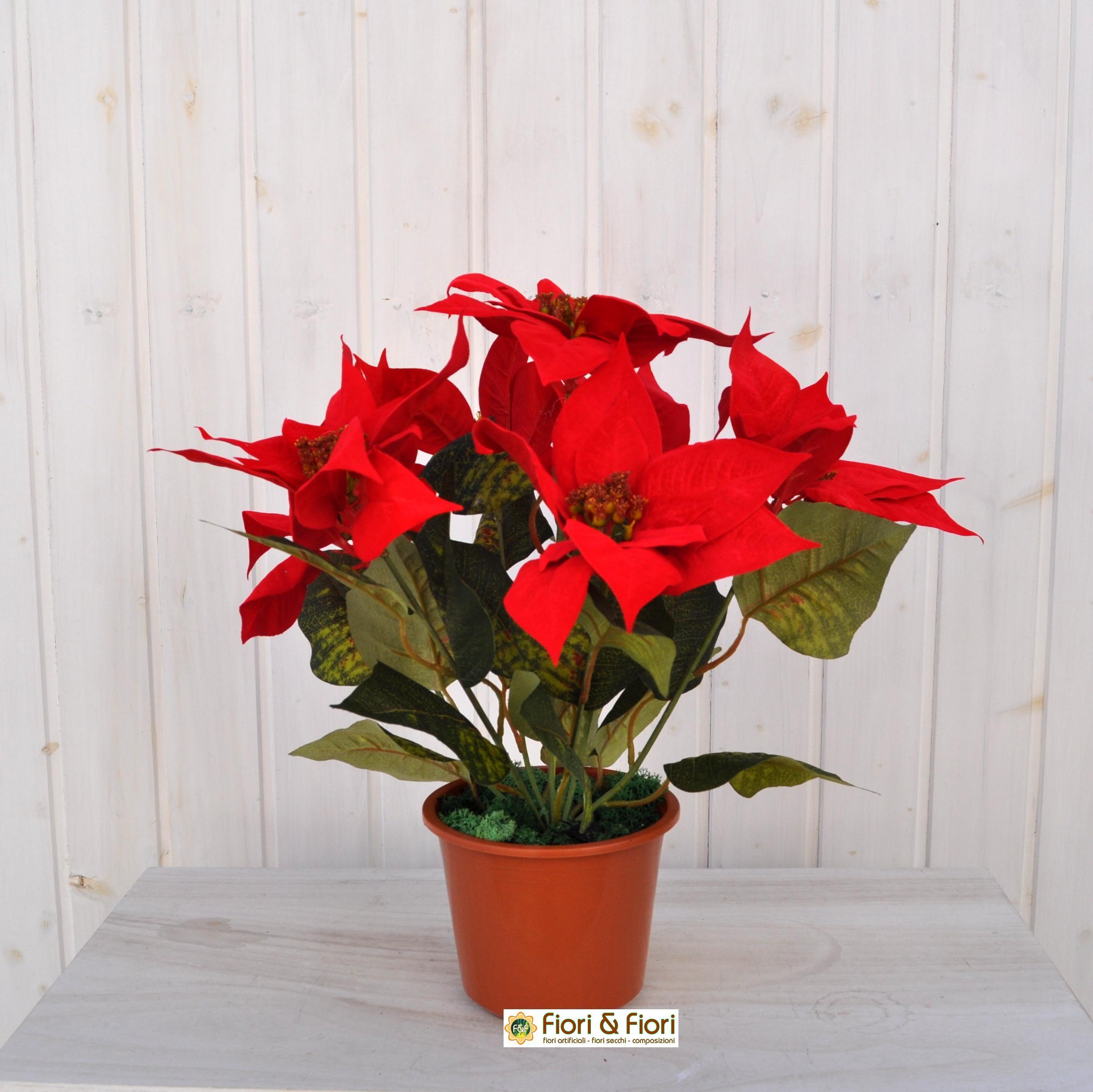 Stella Di Natale Artificiale.Pianta Stella Di Natale Artificiale Maxi Rossa