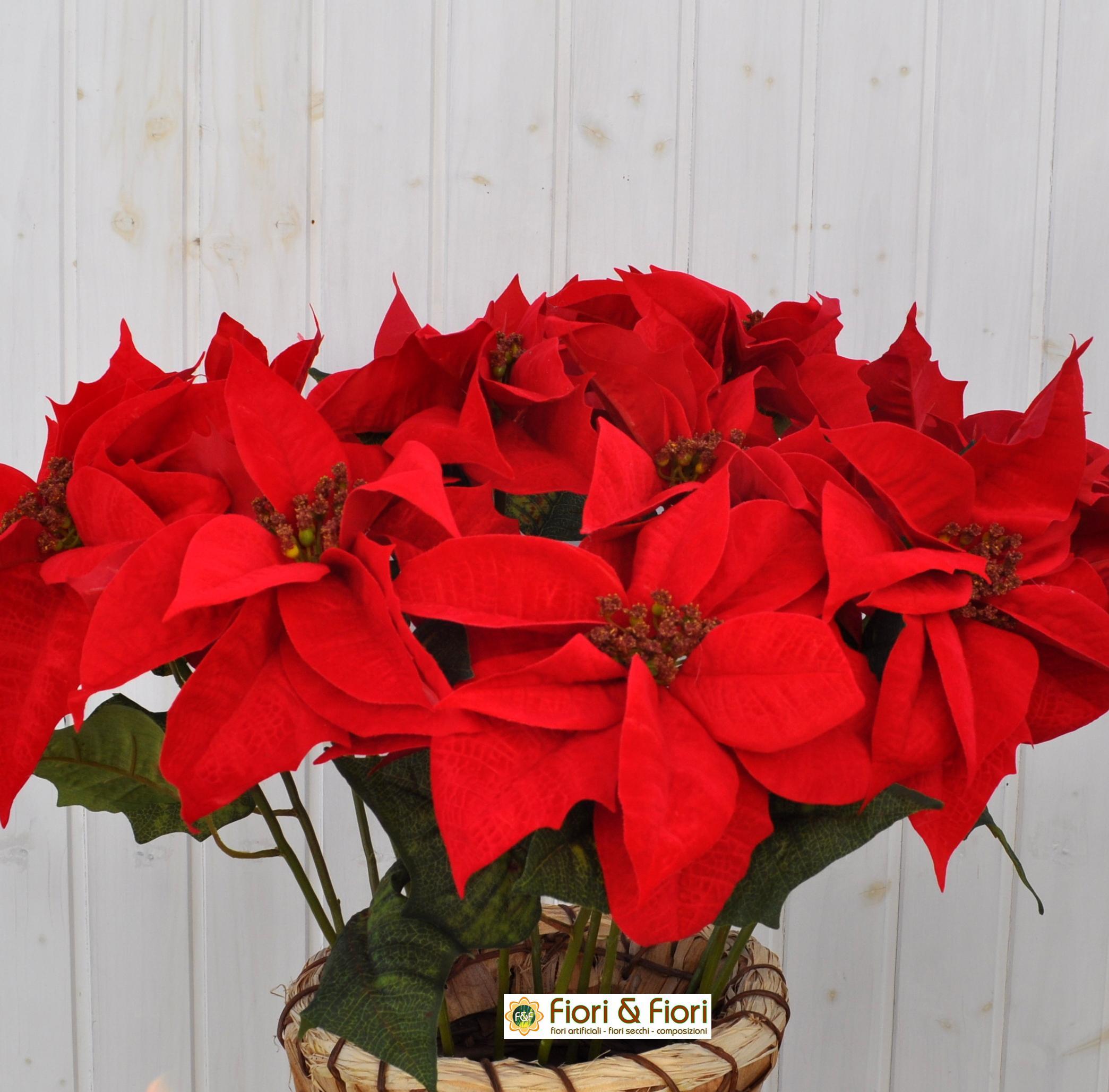 Stelle Di Natale Immagini.Stella Di Natale Artificiale Spray Rosso Per Decorazioni Natalizie