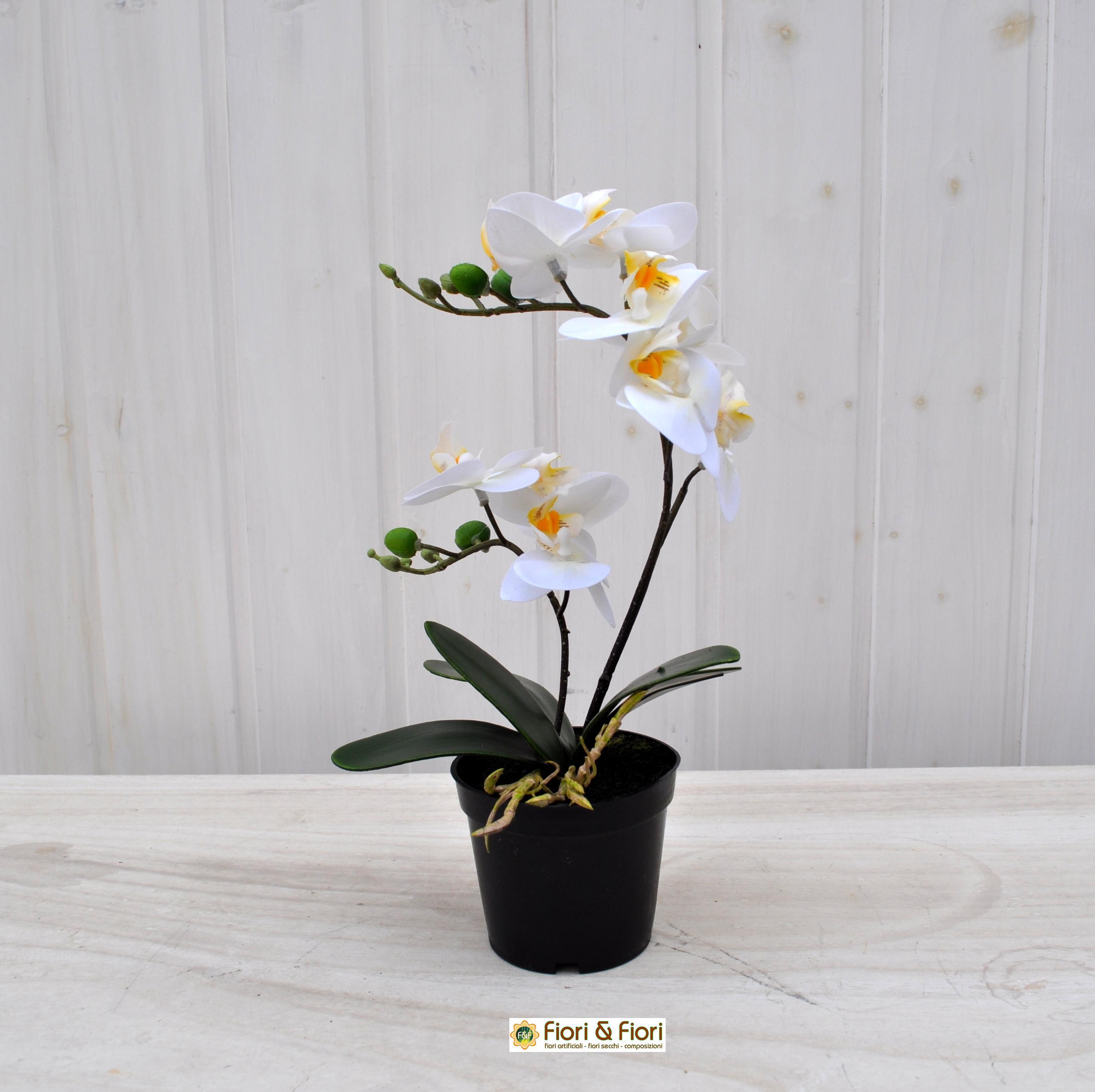 Orchidea artificiale real touch bianco per decorazioni di for Orchidea finta