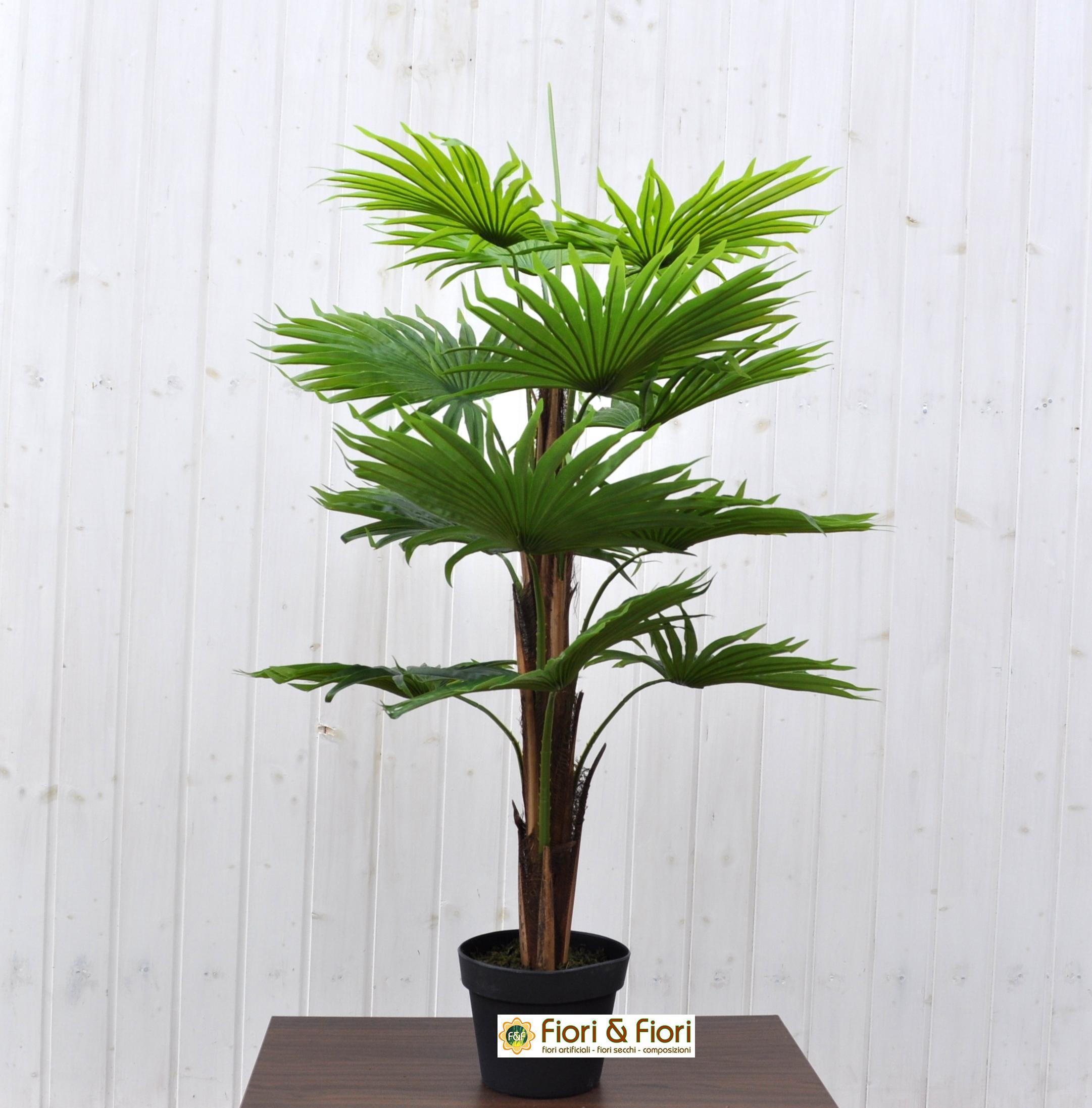 Palma australiana artificiale real touch per decorazioni for Pianta palma