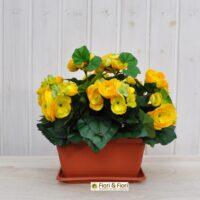 Begonia artificiale balcone gialla
