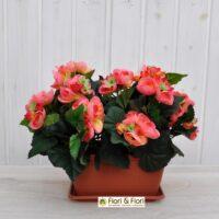 Begonia artificiale balcone arancio