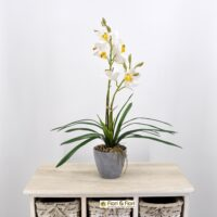 Orchidea cymbidium artificiale bianco