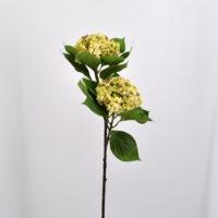 Fiore artificiale Ortensia annabelle crema
