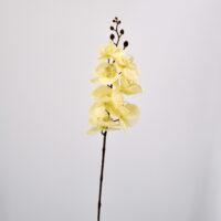 Orchidea phalaenopsis artificiale bianco