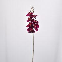 Orchidea phalaenopsis artificiale fucsia