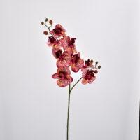 Orchidea Phalaenopsis amabilis artificiale rosso