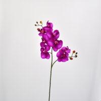 Orchidea Phalaenopsis amabilis artificiale fucsia