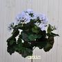 Geranio artificiale pelargonium bianco