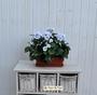 P Geranio artificiale pelargonium bianco bne