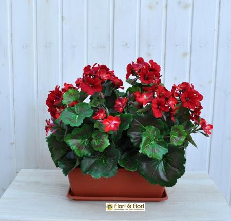 Geranio artificiale pelargonium rosso B.ne