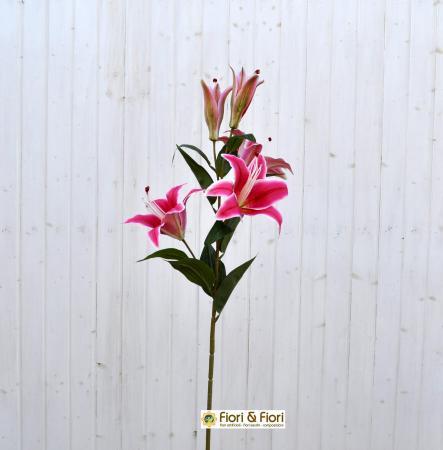 Lilium artificiale fucsia