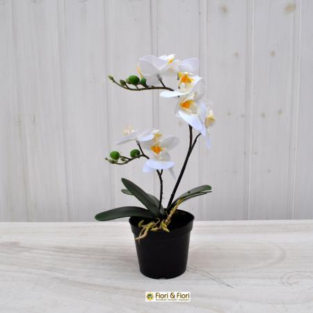Orchidea artificiale real touch bianco