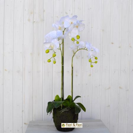 Phalaenopsis artificiale real touch