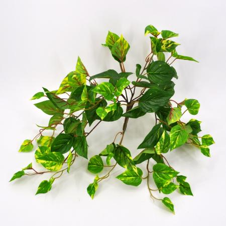 Pothos artificiale real touch medium