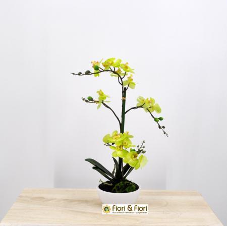 Pianta artificiale Orchidea Phalaenopsis Doris verde