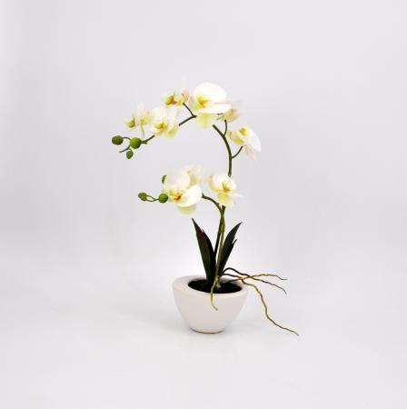Pianta artificiale Orchidea Phalaenopsis Doris bianca
