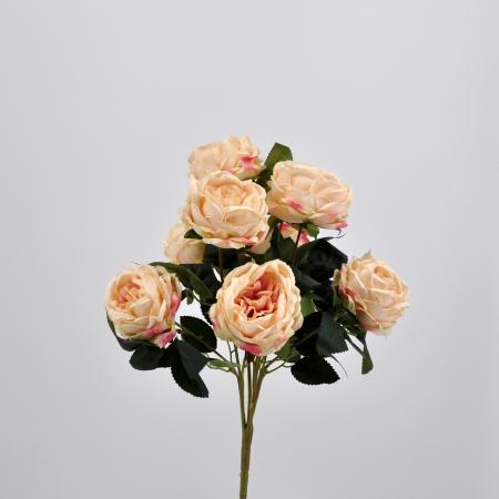 Bouquet Rosa cabbage rosa
