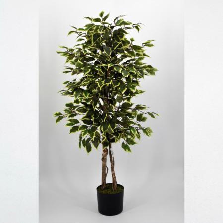 Pianta artificiale Ficus Benjamin variegato 125
