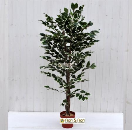 Pianta artificiale Ficus Benjamin