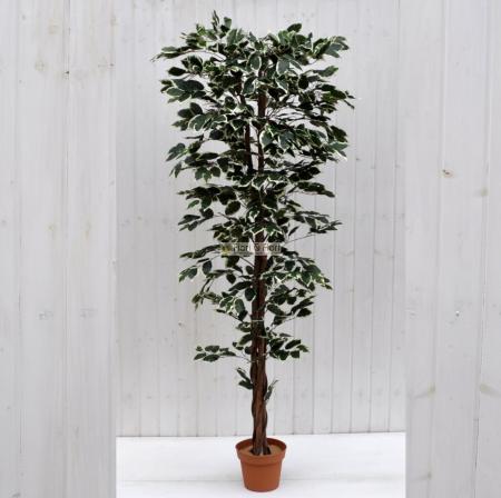 Pianta artificiale Ficus Benjamin variegato 180